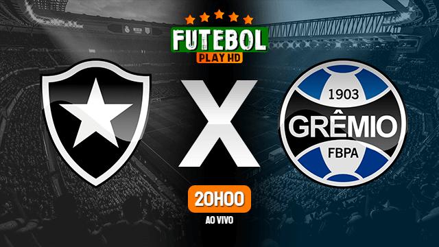 Assistir Botafogo x Grêmio ao vivo HD 08/02/2021 Grátis