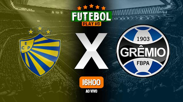 Assistir Pelotas x Grêmio ao vivo online HD 08/03/2020